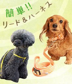 iDogの卸売り犬首輪 リード ハーネス | 犬服・猫用品の卸売り専用サイト|idogicat.net