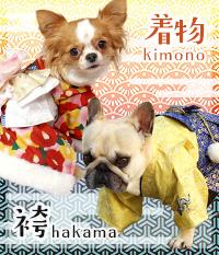 【卸】犬服(着物・袴・浴衣)