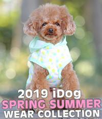 2019春夏ウェアコレクション