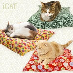 IDOG&ICAT おネコさま座布団
