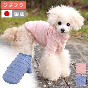 アウトレット iDog レースボーダーTシャツ アイドッグ 【 卸 犬服 】