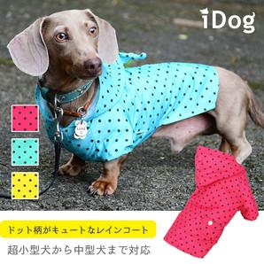 iDog ドットレインコート アイドッグ 【卸 犬服】