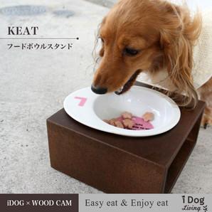 iDog Living Keatキートスクエア1 フードボウル別売