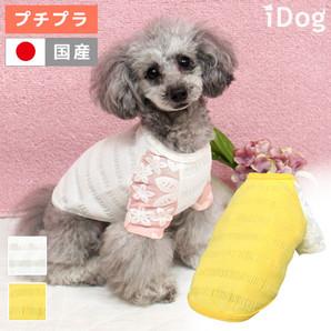 アウトレット iDog ボーダーフラワーTシャツ アイドッグ 【 卸  犬服 】