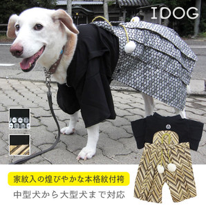 iDog 愛犬用袴 中大型犬用 家紋付袴 アイドッグ 【卸 犬服】