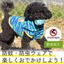 iDog テープ風ロゴボーダーパーカー moscape 【卸 犬用品】