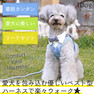 iDog 犬用コンフォートハーネス リード付き おすまし襟ギンガムチェック アイドッグ【卸 犬用品】