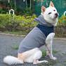 柴犬12.8kgのとうふちゃんはネイビーのLarge-Sを着用