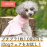 iDog リボン付ギンガムチェックワンピ アイドッグ【卸 犬用品】