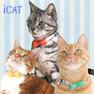 iCat ラブリーカラー カラフルストライプ×リボン【卸 猫用品】