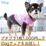 iDog HAPPYプリントタンク アイドッグ【卸 犬用品】
