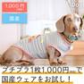 iDog ロケットボーダータンク アイドッグ【卸 犬用品】