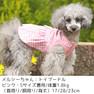 トイプー1.8kgのメルシーちゃんはピンクのSを着用