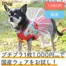 iDog フラワー切替タンク アイドッグ【卸 犬用品】