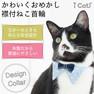 iCat デザインカラー トライアングル アイキャット【卸 猫用品】