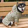 柴犬8.5kgの凪ちゃんはグリーンのXXLを着用