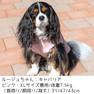 キャバリア7.5kg(首31/胴47/丈43cm)のルージュちゃんはピンクのXLを着用