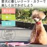 iDog リード・カラーセット リボン付ギンガムチェック