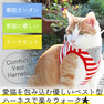iCat 猫用コンフォートハーネス リード付き スターバンダナボーダー アイキャット【卸 猫用品】