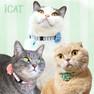 iCat ラブリーカラー かすれボーダー×レースフラワー【卸 猫用品】