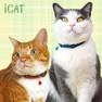 iCat カジュアルカラー チェック柄【卸 猫用品】