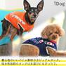 iDog カメラマンタンク アイドッグ 【卸 犬用品】