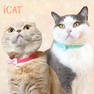 iCat ラブリーカラー ピンドット×水玉リボン【卸 猫用品】