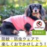 iDog 重ね着風タンク moscape アイドッグ【卸 犬用品】