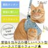 iCat 猫用コンフォートハーネス リード付き おしゃれ襟ストライプスター【卸 猫用品】