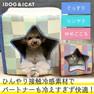 IDOG&ICAT スターチェックキューブ【卸 ペット用品】