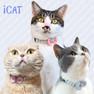 iCat キティカラー かすれボーダー×ピンボーダーリボン【卸 猫用品】