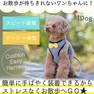 iDog クッションイージーハーネス リボン付ギンガムチェック【卸 犬用品】
