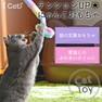 iCat ふわふわパステルロングじゃらし アイキャット【卸 猫用品】