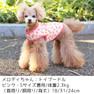 トイプー2.3kg(首18/胴31/丈24cm)のメロディちゃんはピンクのSを着用